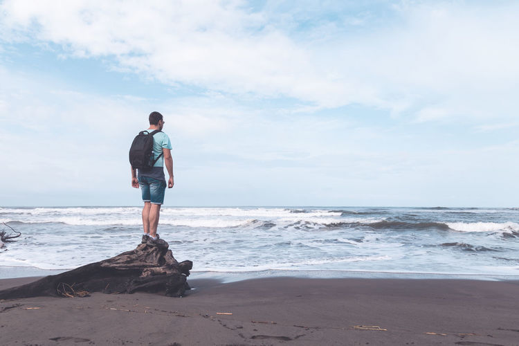 Rear view of man standing on driftwood at beach