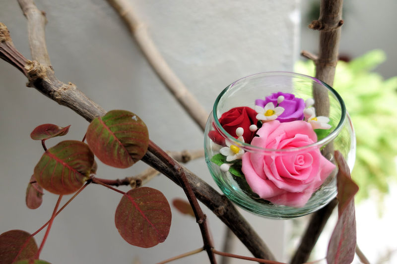 Pink flower in glass dome Pink Pink Rose Pink Flower 🌸 Preserved Close-up Dome Flower Flower Head Focus On Foreground Glass Dome Indoors  Nature No People Pink Flower Preserved Flowers Roses