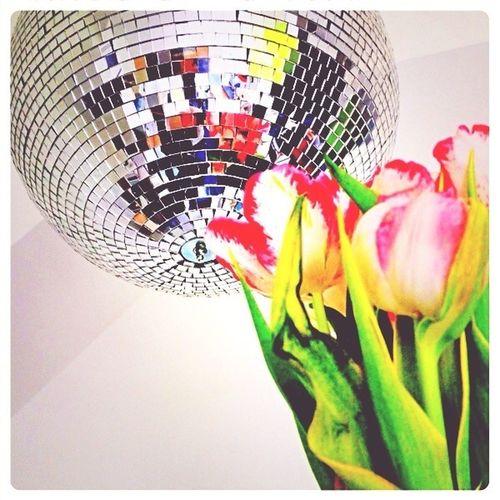"""Yeay es wird Frühling und unser neues Thema ist: """"Lollipop-Teatime-Party""""!!!"""
