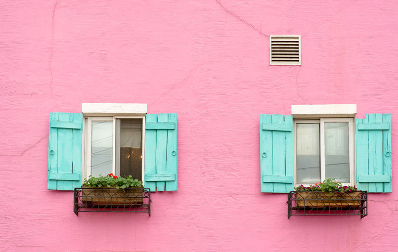the series of Color. Colors Paint Wall Architecture Building Exterior Day Flower Pink Color Plant Window Box Windows