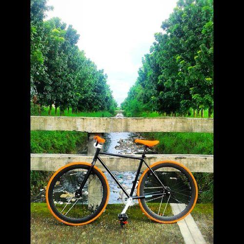 Ito yung bike ni @carloaquino11 na ginamit ko at na flat hahaha!