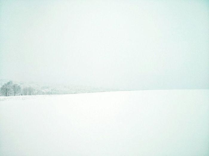 Snow White Snowscape White Winterland Minimallandscape Minimalism Mobileartistry Silence Dreamy