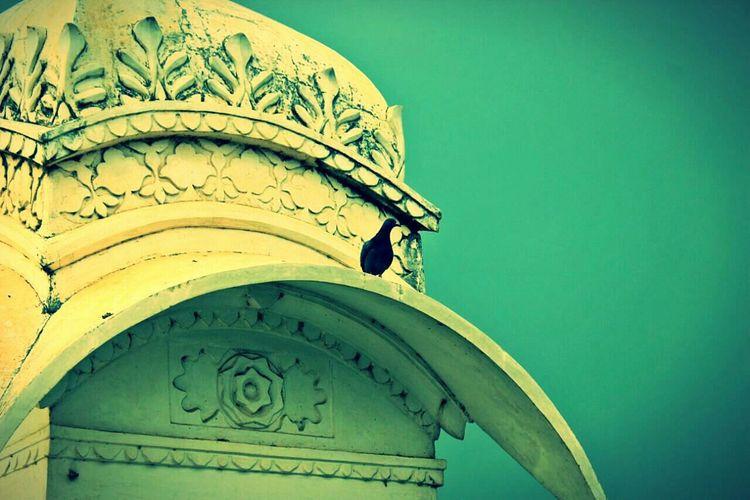 :) Jagmandir IndiaTravelDiaries Chapter2 Udaipur Beauty Lovestruck Wanderlust EyeEm First Eyeem Photo