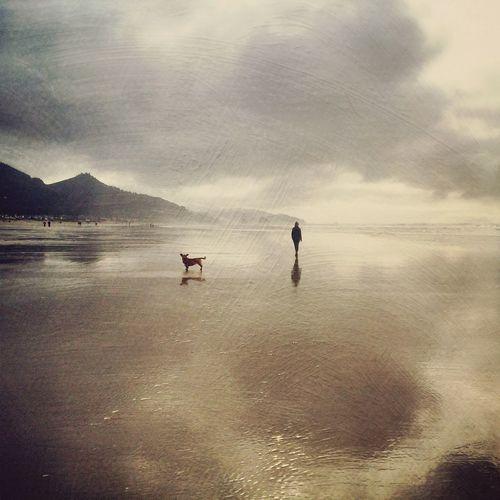 NEM Painterly NEM Landscapes NEM GoodKarma NEM Clouds NEM Silence NEM Submissions