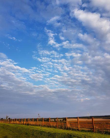 Field Agriculture Rural Scene Cloud - Sky Landscape Tranquil Scene High Summer