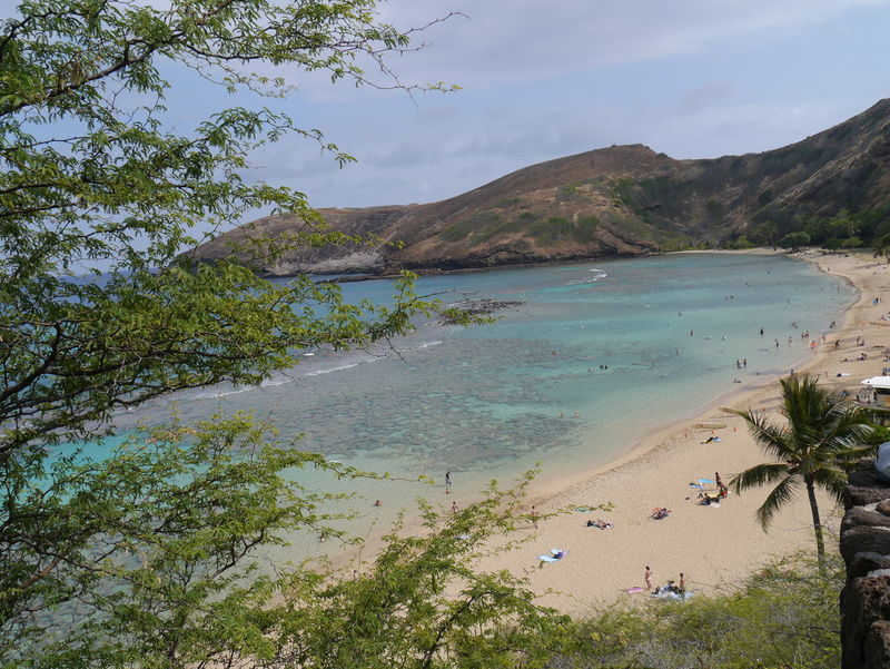 Beach Beauty In Nature Cloud Cloud - Sky Coastline Growth Hanauma Bay Hanauma Bay State Park Hawaii Horizon Over Water Mountain Nature Non-urban Scene Outdoors Remote Scenics Sea Shore Sky Tourism Travel Destinations Tree Vacations Water