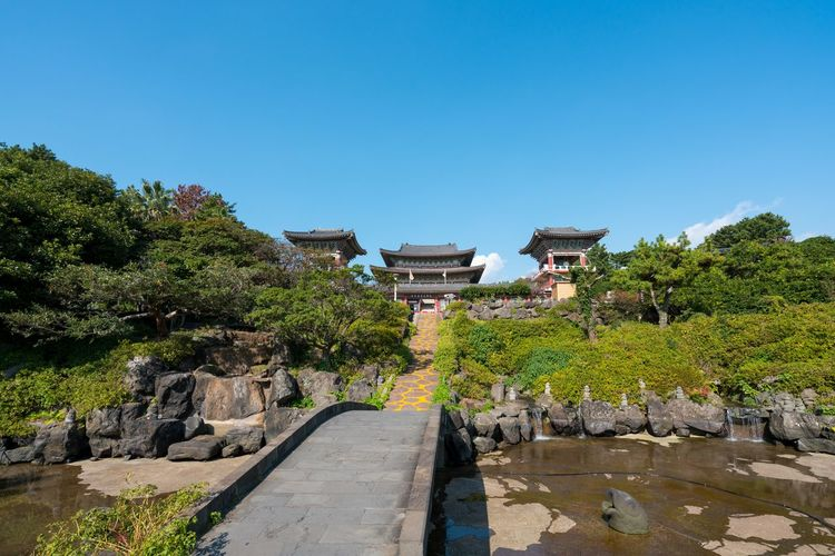 ASIA Jeju Korea Tradition Yakshin Temple Ancient Ancient Civilization Architecture Building Exterior Built Structure Clear Sky Cultural Heritage Culture Day History Jejuisland Nature No People Outdoors Sky Travel Destinations Tree Water EyeEm Ready   EyeEmNewHere