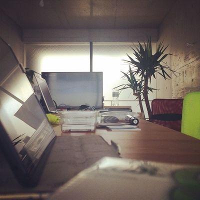 偶然のオフィス景色 Warmthinc
