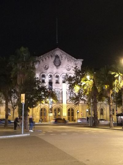 On Sale Universität  Barcelona, Spain City Illuminated Tree Place Of Worship Religion Architecture Building Exterior Built Structure Sky Historic Civilization Cross