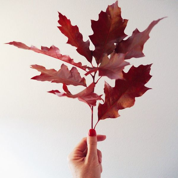 Mi Serie Minimal Minimalobsession Autumn Colors Monochrome Photography