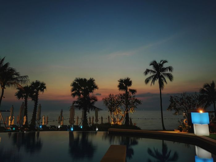 Water Swimming Pool Reflection Night Tree Business Finance And Industry Palm Tree Vacations Sunset No People Illuminated Sky Outdoors City Nature Weekend Getaway Relaxation Destination Lifestyles Journey Enjoyment Day Swimming Beach Tree