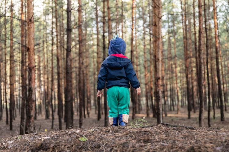 Rear view of child standing in forest