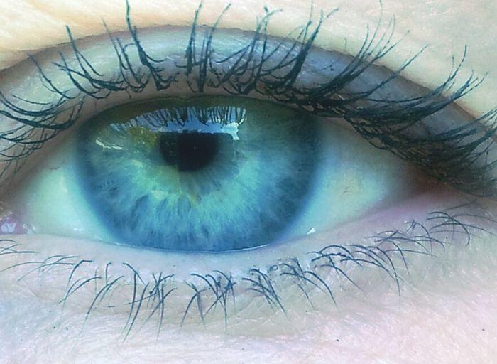 ShowingMyEyes Throughmyeyes Blue Eyes