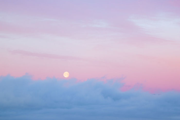 Full moon sets over morning fog at dawn Sky Cloud - Sky Scenics - Nature Tranquility Beauty In Nature Pink Color Nature Tranquil Scene Idyllic Outdoors Cloudscape Abstract Backgrounds Meteorology Moon Full Moon Dawn Softness Dreamy Pastel Colors Nordic Morning Morning Light Morning Sky
