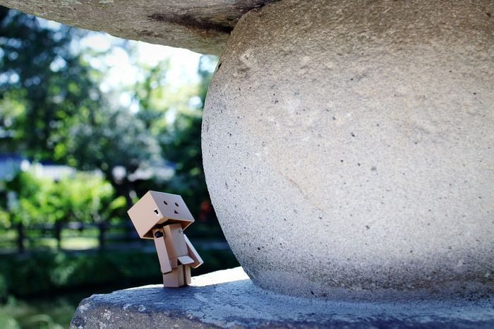 見上げてみた。 Danbo Lanterns Taking Photos Cheese! Enjoying Life Depth Of Field Shrine Stone