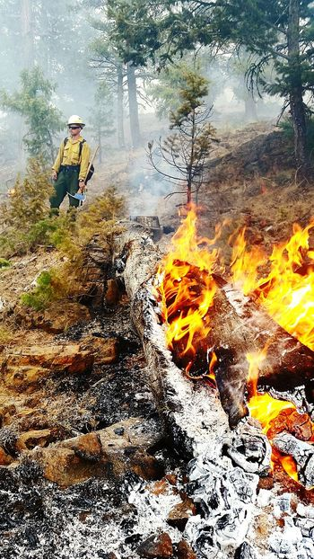 Wildlandfirefighter Oregon Washington Fire Capture The Moment Flames Smoke Wilderness Trees Firefighter