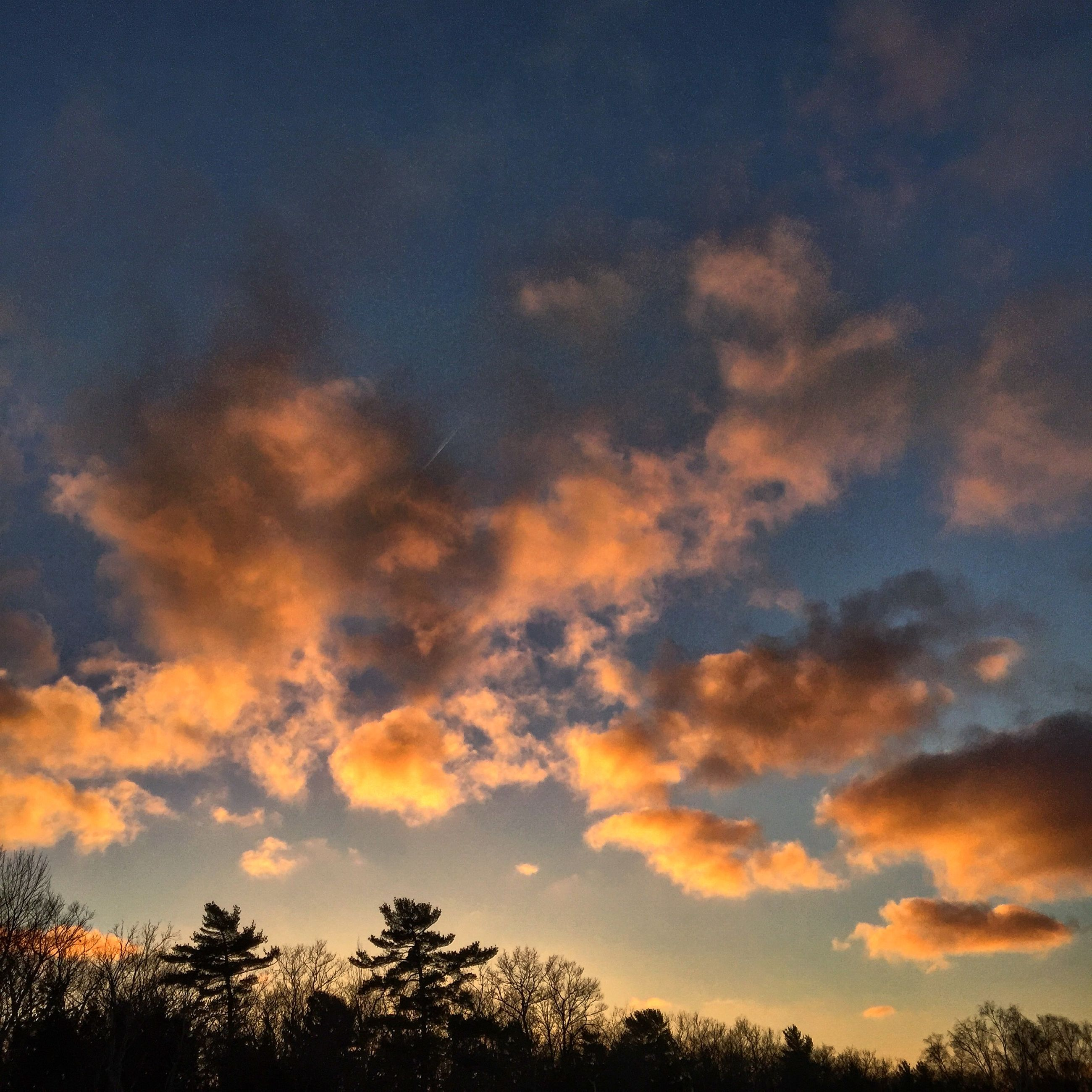 sunset, sky, low angle view, tree, silhouette, beauty in nature, tranquility, scenics, cloud - sky, tranquil scene, nature, orange color, idyllic, dramatic sky, cloudy, cloud, growth, outdoors, high section, no people