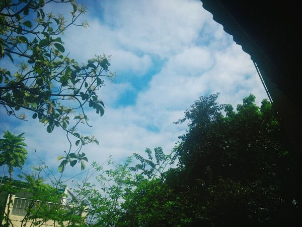 Landscape Clouds And Skies Nature Street Photography Lovely day