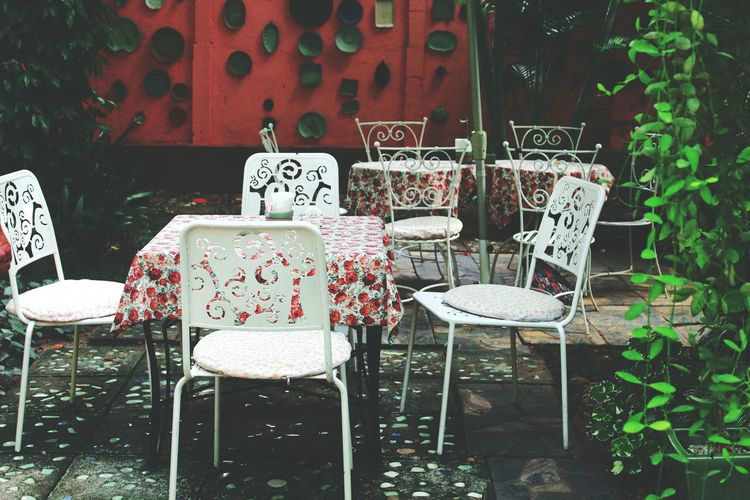 Empty chairs and table by plants at cafe