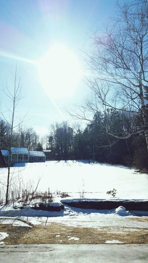 nice sunny day in winter Water Nature Outdoors Day Lake Tranquility Sky