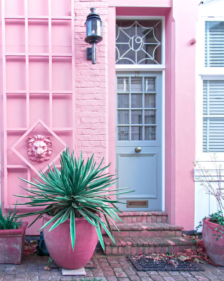London style London lifestyle Doorway Door Pink Flower Window Box Pink Color Window Door Architecture Building Exterior Built Structure Plant Potted Plant Front Door Façade Flower Pot Row House Closed Door Entryway