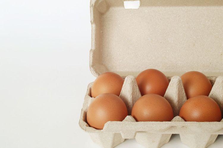 Eggs Tray Still