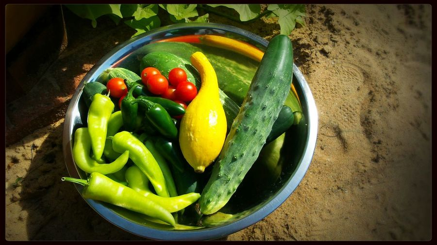 Harvest Howdoesyourgardengrow Growfoodnotlawns