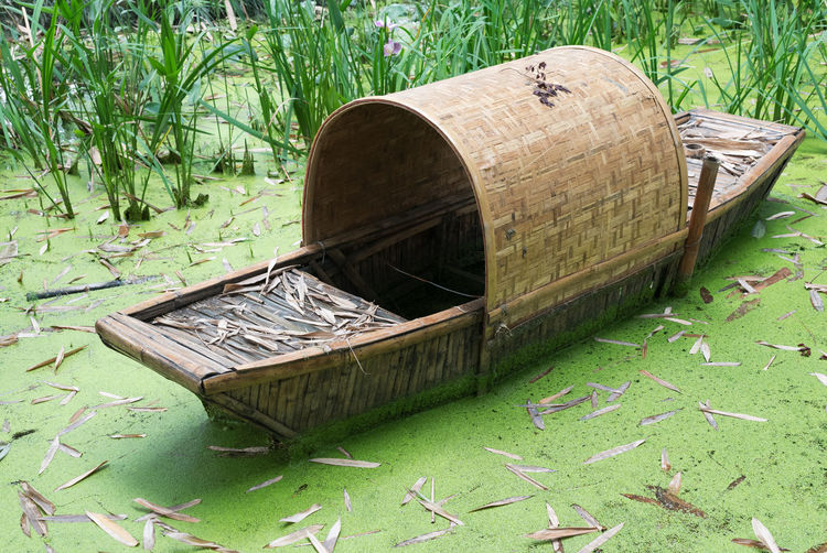 High angle view of wooden boat in swamp