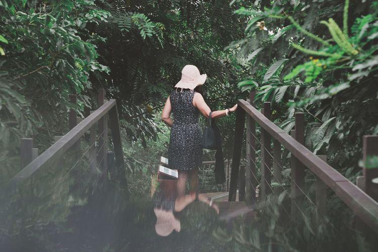 Rear view of woman walking on footbridge in park