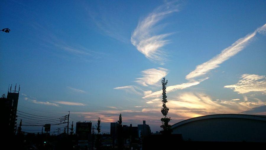 「彩雲」かな? 分かりにくいけど、中央のビルの右側の雲が、綺麗な虹色に発色してた。一眼レフを持ってきてなかった事が悔やまれる(T_T) 彩雲 Iridescent Clouds Iridescent Color Silhouette City Cloud - Sky Scenics Sky And Clouds Taking Pictures Taking Photos EyeEmbestshots EyeEm Gallery EyeEm Best Shots EyeEmBestPics EyeEm The Best Shots EyeEm Skyporn Sunset_collection Sunset Silhouettes Sky_collection Coulds And Sky Cloud And Sky Clouds Hello World Dramatic Sky