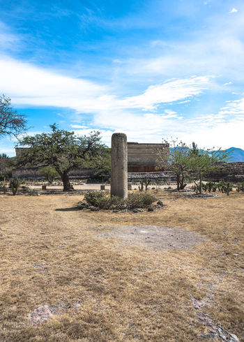 Archeological Archeological Complex Archeology Cloud Cloud - Sky Day Field Landscape Mexico Mexico City Mitla Nature No People Oaxaca Outdoors Ruins Ruins Architecture Scenics Sky Tranquil Scene Tranquility Travel Travel Destinations Travel Photography Tree