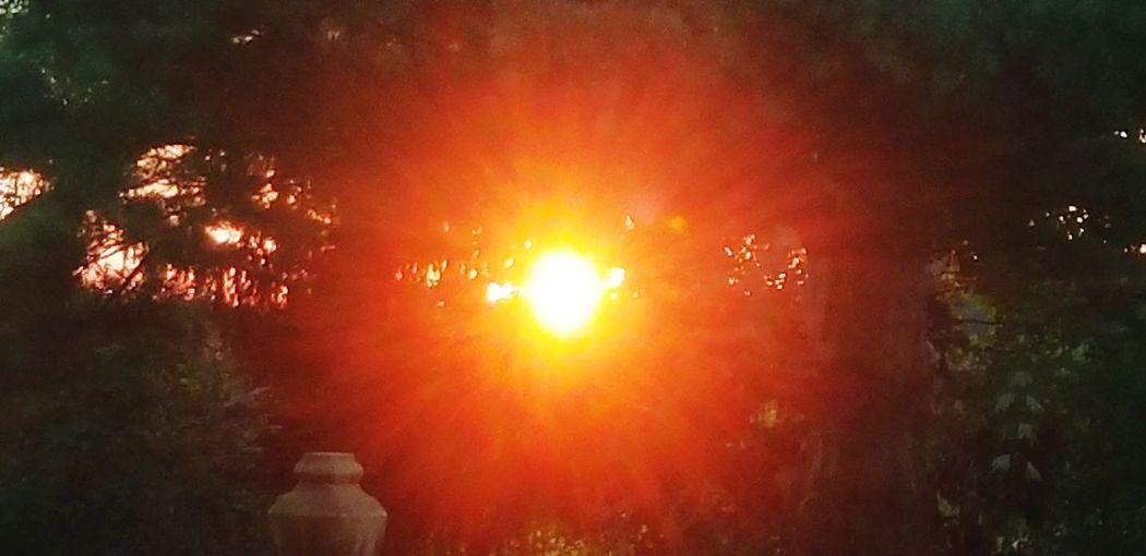 Sun rise Orange