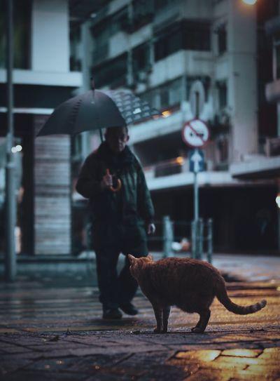 Man walking on street in rain