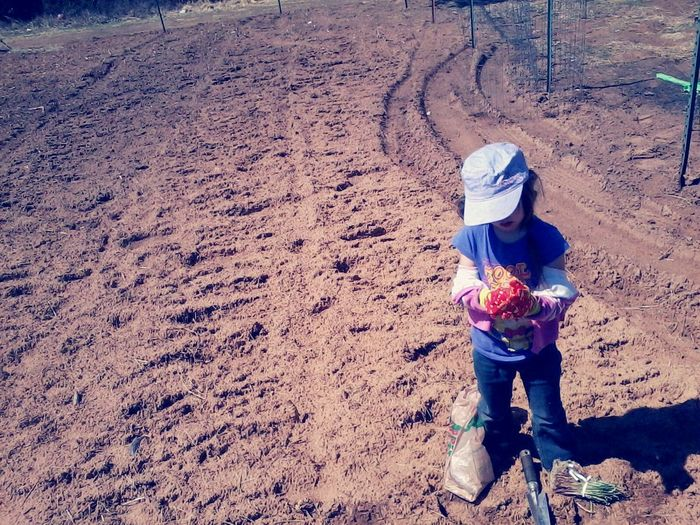 High Angle View Of Girl Standing At Farm Field