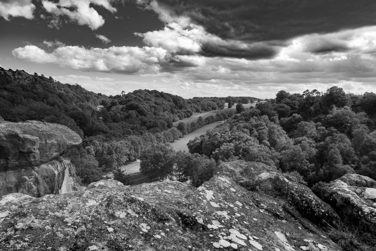 Looking over the Hawkstone Park Golf Course // Cloud - Sky Nature Growth No People Tree Tranquility Sky Outdoors Day Beauty In Nature Scenics Landscape Hawkstone Travel Destinations EyeEmBestPics EyeEm Best Shots - Nature EyeEm Best Shots Hawkstoneparkfollies National Park Black And White EyeEm Best Edits Tranquility EyeEm Gallery Beauty In Nature Nature