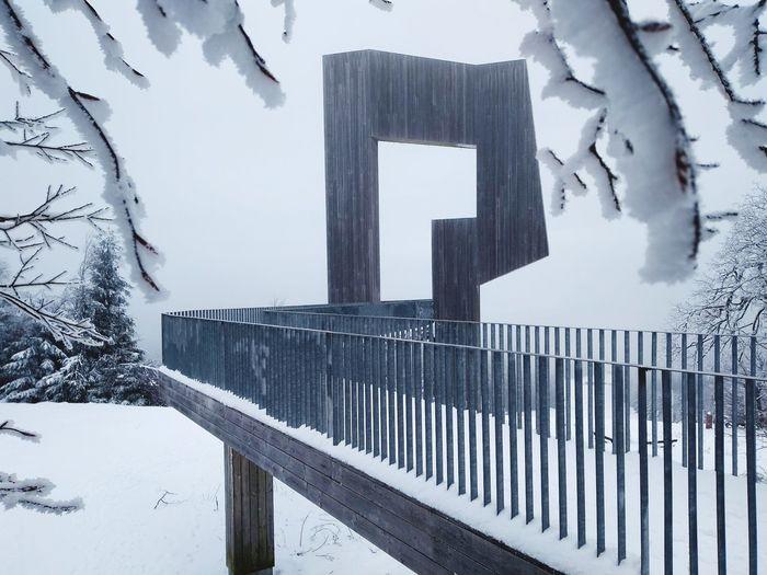 Snow Ice Winter Erbeskopf Hermeskeil Hunsrück Trier Rhineland-palatinate Snowflake Monument Sculpture Tourist Skiing Snowboarding Wintersport