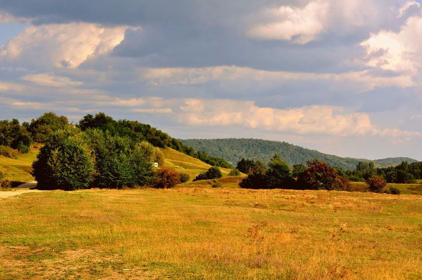 Cloud Countryside Field Hill Landscape Mountain Nature Outdoors Rural Scene Sky Summer Tree