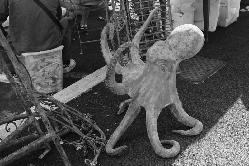 Black And White Bric à Brac Day Market Metal Octopus Outdoor Market Shopping Stalls Stalls At Sunday Market Sunday