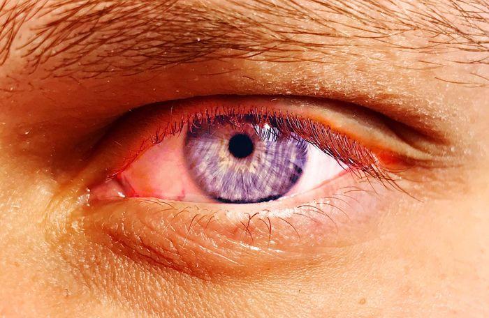 Human Eye Human Body Part Close-up Eyesight Eyelash Real People One Person Iris - Eye Sensory Perception Eye IPhone7Plus Blue Eyeball Human Skin Eyebrow People Adult Vision Day Luxury Luxurylifestyle  Luxuryselfies