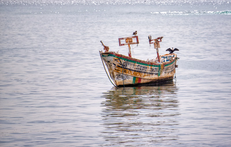 Birds standing on a lonely colorful pirogue Water Nautical Vessel Transportation Mode Of Transportation Waterfront Sea Nature Day Outdoors Reflection Tranquility People Men Rippled Sailing Travel Real People