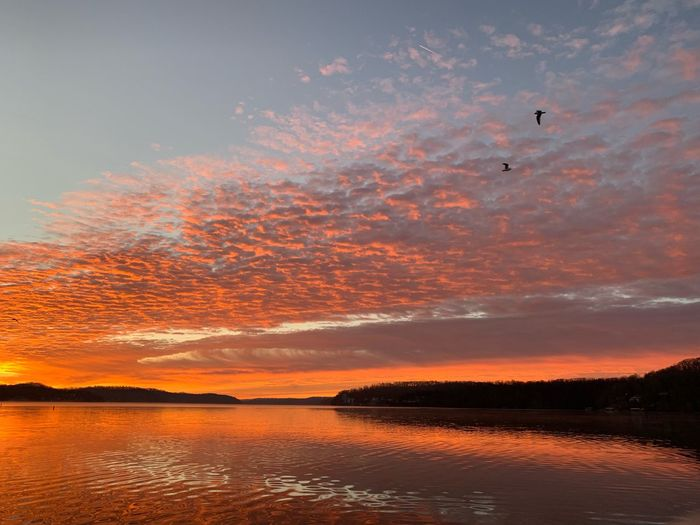Birds in flight Lake Of The Ozarks Missouri Sunrise Sky Water Cloud - Sky Beauty In Nature Scenics - Nature Tranquility Tranquil Scene Orange Color Bird Flying Idyllic No People Dramatic Sky Outdoors Romantic Sky The Great Outdoors - 2019 EyeEm Awards