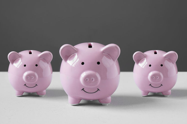 Piggy Bank Piggybank Pig Family Saving Money Piggy Bank Save Cash Finance Business Wealth Money Box Moneybox Banking Pink Financial Savings Economy Concept Nobody Ceramic Object Copy Space Copyspace Smile Smiling Happy Three Piglet Multiply Multiplying Group Interest Investment Multiple Reserve Growth Mother Child Baby Coin Bank Value Capital Gain Accretion Side By Side Animal Representation Studio Shot