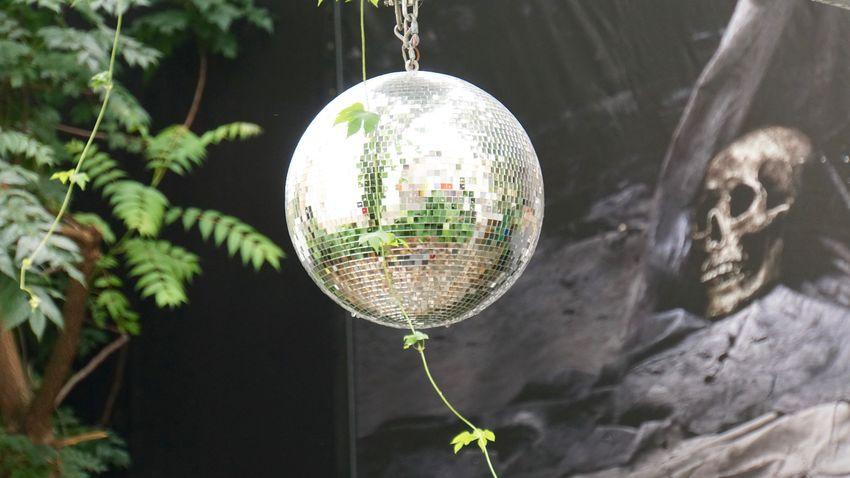 Disco kills Berlin Crystal Ball Decoration Disco Disco Ball Glass - Material Kitkat Reflection Skull Sphere Capture Berlin