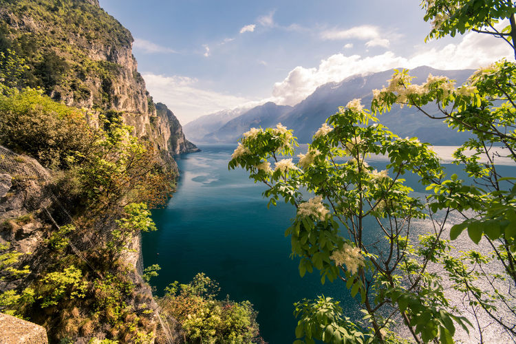 Beauty In Nature Scenics - Nature Water Tranquil Scene Tranquility Sky Mountain Plant Tree Nature Sea No People Cloud - Sky Day Idyllic Growth Non-urban Scene Green Color Sunlight Outdoors