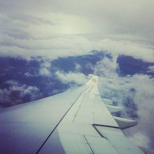 Up in the air! Lifeinshots Travel TravelTales Instatravel Chennai Abudhabi Roma Genova Arrivo Followme Followback Follow Like4like Likeforlike India To  Italy