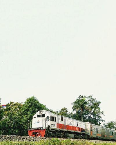 train Train Locomotive Java Nature Central Java Transportation INDONESIA Tree Road Sign Communication Text Sky Railroad Crossing Railway Signal Information