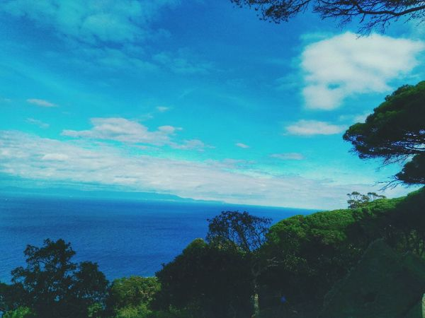 View Into Land Tanger  Sea And Sky Landscape_photography Cloudscape Positive Thinking Beauty In Nature Day Tranquility Cloud - Sky Rmilat Between The Trees Sky Posing