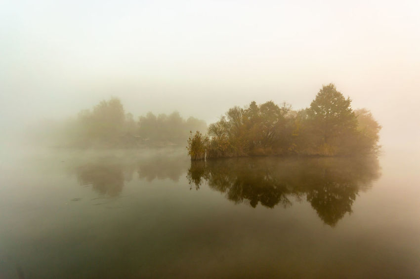 misty autumn morning Fog Tranquility Reflection Tree Tranquil Scene Scenics - Nature Beauty In Nature Water Lake Plant Nature No People Sky Morning Idyllic Waterfront Non-urban Scene Environment Outdoors Hazy