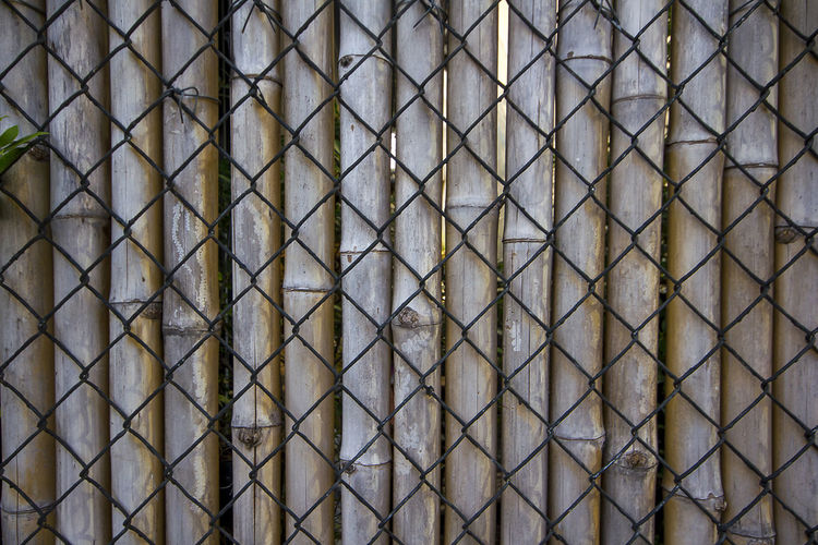 Wire mesh, bamboo used to make fences. Bamboo Fences Architecture Backgrounds Bamboo Fence Barrier Boundary Built Structure Close-up Day Design Fence Full Frame In A Row Metal Outdoors Pattern Repetition Shape Textured  Wall - Building Feature Wire Mesh Wire Mesh Background Wire Mesh Fence Wire Mesh Sculpture Wire Meshes