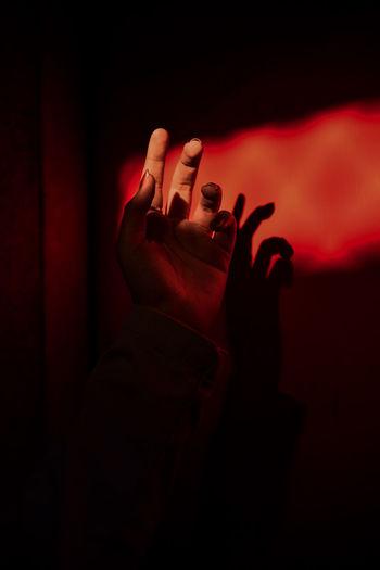 Human Hand Body